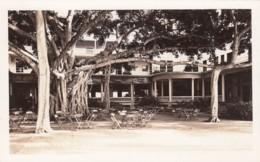 Honolulu Oahu Hawaii, Banyan Tree On Waikiki Beach, C1930s/40s Vintage Real Photo Postcard - Honolulu