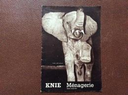 CIRQUE NATIONAL KNIE  Animaux Du Cirque  KNIE MENAGERIE  Elephant SUISSE - Dépliants Turistici
