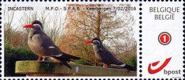 """Incastern (persoonlijke Foto) Gegomde Zegel Met Tekst """"Postzegelbeurs Keerbergen 7/2/2016 M.P.O & S.P.A.B."""" - Personalisierte Briefmarken"""