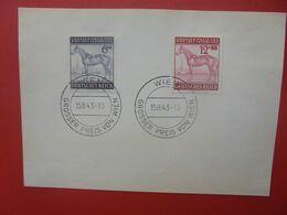 3eme REICH 1943 (B.19) - Lettres & Documents