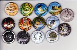 14 Capsules Plaque Muselets  Val De Loire Symbolisme N°6  Instant Cancen Loges Boudot Vinci Clos Lucé ... Ts Différents - Unclassified