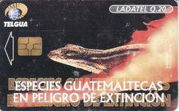 TARJETA DE GUATEMALA DE UNA LAGARTIJA (LADATEL) LIZARD - Guatemala