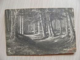 SALE! Old Post Card Russia 1917 Sent To Viatka Kirov Forest - 1917-1923 Republic & Soviet Republic