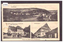 GRUSS AUS HOFEN - B ( LEGERS PLIS ) - SH Schaffhausen