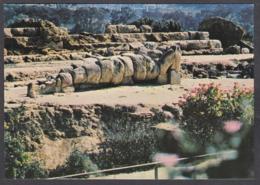 116270/ AGRIGENTO, Telamone Del Tempio Di Giove - Agrigento