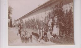ROMANIA KARPATEN CARPATHEN RUMANIA  HARD COPY  OURS BEARS OSOS BEREN 17*12CM Fonds Victor FORBIN 1864-1947 - Luoghi