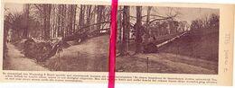Orig. Knipsel Coupure Tijdschrift Magazine - Ontwortelde Bomen Na Storm Tussen Zellik & Asse  - 1922 - Alte Papiere