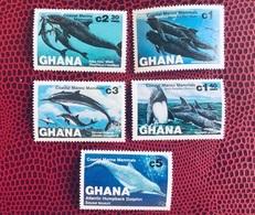 GHANA 1983 5 V Neuf ** MNH YT 781 782 783 784 785 Coastal Marine Mammals Baleines - Unclassified