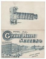 PISA Grand Hotel Nettuno Cartoncino Pubblicitario - Advertising