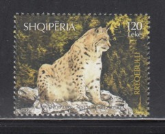 2017 Albania Wild Cats  Complete Set Of 1  MNH @  BELOW FACE VALUE - Albanie