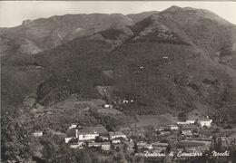LUCCA - DINTORNI DI CAMAIORE - NOCCHI........S55 - Lucca