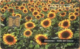 Colombia - Prontel-14, Sunflowers, Girasoles, Valle Del Cauca, Flowers, 150.000ex, 4.000 $, 1996, Used - Colombia