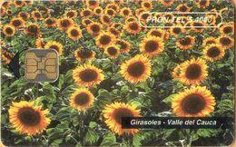 Colombia - Prontel-14, Sunflowers, Girasoles, Valle Del Cauca, Flowers, 150.000ex, 4.000 $, 1996, Used - Kolumbien