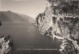RIVA DEL GARDA-LIMONE-TIGNALE GARGNANO-LAGO DI GARDA-CARTOLINA VERA FOTOGRAFIA- NON VIAGGIATA -ANNO 1950-1960 - Trento