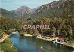 CPM La Corse Ile De Beaute Porto Le Pont Et La Foret - Corse