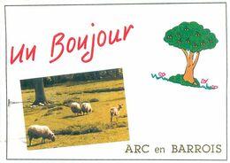 Cpsm - Un Bonjour De Arc En Barrois       Q550 - Arc En Barrois