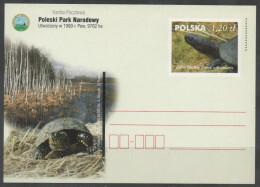 POLAND, POSTAL STATIONERY, MINT, TURTLES, PREPAID POSTCARD - Turtles