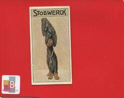 Chocolat STOLLWERCK Chromo Illustrateur Chien Miroir Déformant Teckel Basset - Stollwerck