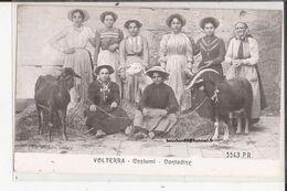 Italie - Volterra - Costumi - Contadine Capre Goat - Autres Villes