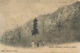 Sentier D' Orjobet Et Rochers Du Salève . Trou De La Tine . Edit Co Neuchatel - Andere Gemeenten