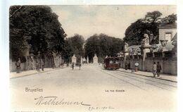 BRUSSEL / BRUXELLES / LA RUE DUCALE / TRAM / TRAMWAYS 1902 - Corsi