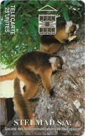 Madagascar - Lemurs Of Madagascar (STELMAD S.A.) - Chip SC7, 25Units, Used - Madagascar
