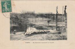 CPA (31) PIBRAC Ste Germaine Traversant Le Courbet Mouton Ovin (2 Scans) - Pibrac