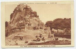 CPSM Exposition Coloniale 1931 - Parc Zoologique, Rocher Des Singes - Tentoonstellingen