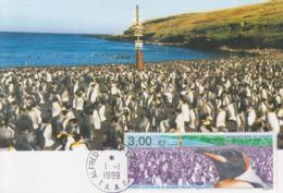 Carte  Maximum  1er  Jour   T.A.A.F    Manchotiére  De  CROZET   1999 - Terres Australes Et Antarctiques Françaises (TAAF)