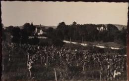 1 Cp, LABERAUDIE, Le Château, Route De L'Aerodrome, Vignes (46 - Lot - Pradines) , éd APA - POUX, Non écrite - Sonstige Gemeinden