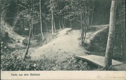 DE BONN /  Partie Aus Dem Melbthal / - Bonn