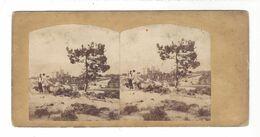 Stéréo Vers 1850 - 1860  à Localiser Identifier - Stereoscopio