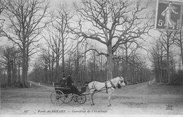 A-20-1846 : FORET DE SENART. ATTELAGE CHEVAL - Sénart