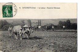 8 - St-FLORENT (Cher) - Le Labour - Route De Villeneuve - Saint-Florent-sur-Cher
