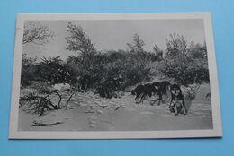 Transport De Bois De Chauffage ( ALASKA > Zie / Voir / See Photo > Série 1 ) Anno 19?? ! - Missions