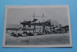 """Attelage """" Service Rapide """" Chez Les Esquimaux ( ALASKA > Zie / Voir / See Photo > Série 1 ) Anno 19?? ! - Missions"""