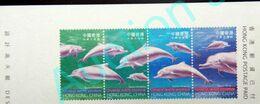Hong Kong Hongkong  1999 ** Post Card Indo-Pacific Humpback Dolphin Chinesischer Weißer Delfin Dauphin à Bosse Du Pacifi - Dolphins
