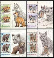 2020Belarus1328-1331x2+TabCubs Of Fox, Wolf, Bear, Lynx - Felinos