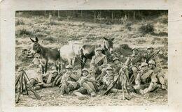 Carte Photo De Soldats Francais Au Repos A La Campagne Avec Leurs Armes Et Leurs Trois Mules Se Reposant A La Campagne - Guerre, Militaire
