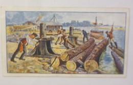 Cacao Und Chocoladen Fabrik In Wittenberg  Serie 109, Nr. 6  ♥ (55034) - Kaufmanns- Und Zigarettenbilder