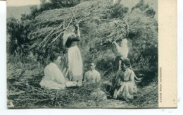 "AFRICA (?) - Native Wood Gatherers - Good Ethnic Women - Raphael Tuck ""View"" Series - Postkaarten"