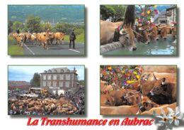 48-MONT D AUBRAC-N°2204-D/0215 - France