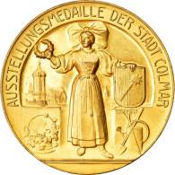 Allemagne, Médaille, Austellung, 25. Deutscher Weinbau Kongress, Colmar, 1910 - Allemagne
