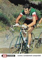 PHOTO RIGIDE, GRAND CALITE, FELICE GIMONDI, SIGNEE IMPRESO EN LA PHOTO TEAM SALVARANI 1972 ( FORMAT 18 X 24 ) - Ciclismo