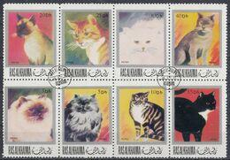 RAS AL KHAIMA Cats 1,used - Chats Domestiques