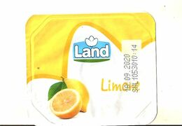 LAND LIMONE YOGURT  FRUIT COPERCHIETTO - Altri