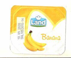 LAND BANANA YOGURT  FRUIT COPERCHIETTO - Altri