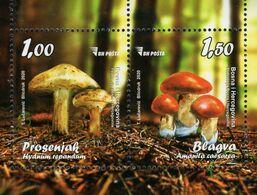 Bosnia & Herzegovina - Sarajevo - 2020 - Mushrooms - Mint Souvenir Sheet - Bosnia And Herzegovina