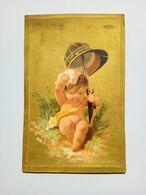 Chromo Liebig S28-c 1873/78 - Liebig