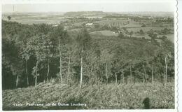 Vaals; Panorama Op De Duitse Lousberg - Niet Gelopen. (Gebr. Simons - Ubach Over Worms) - Vaals